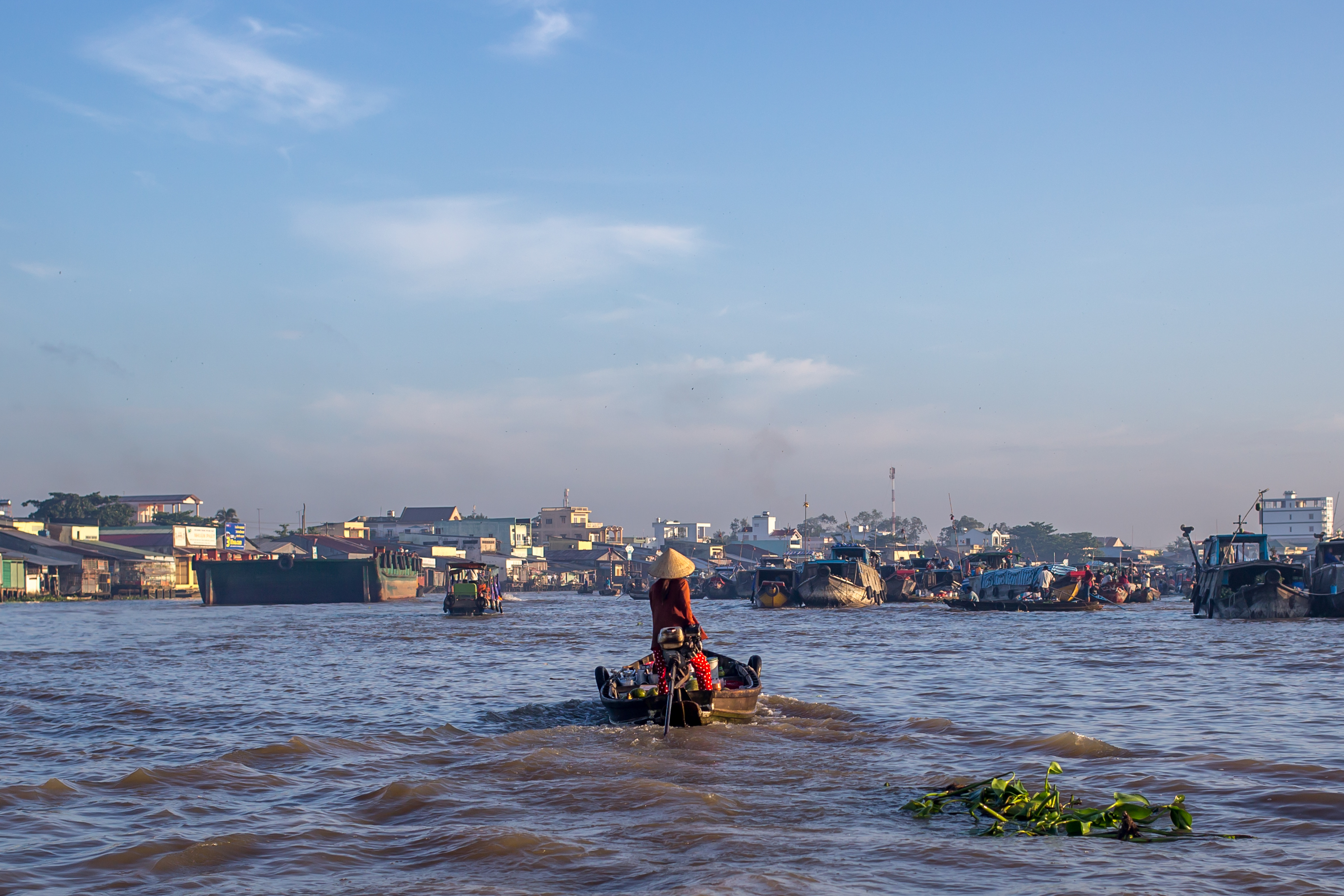 guide to mekong delta