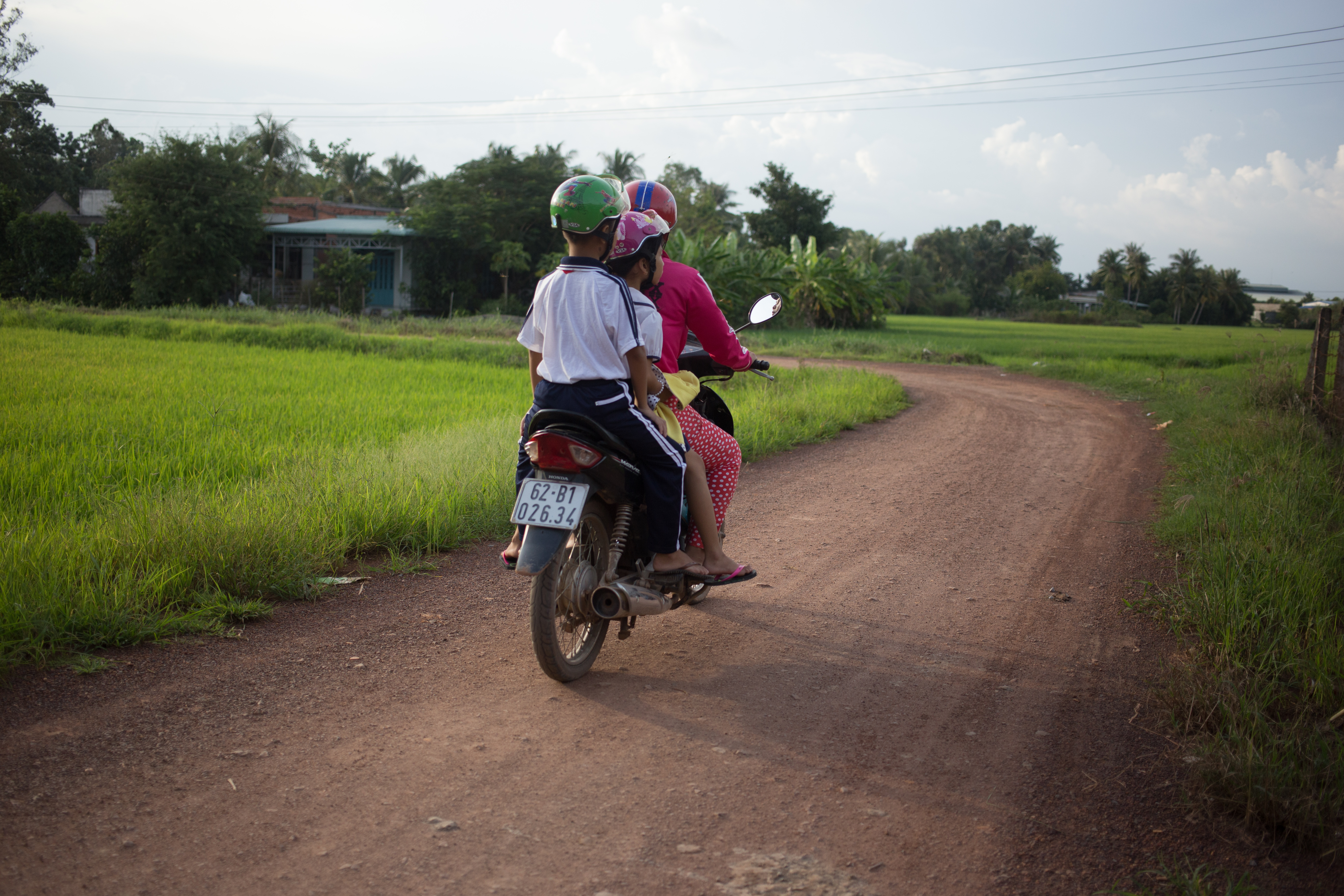 mekong delta