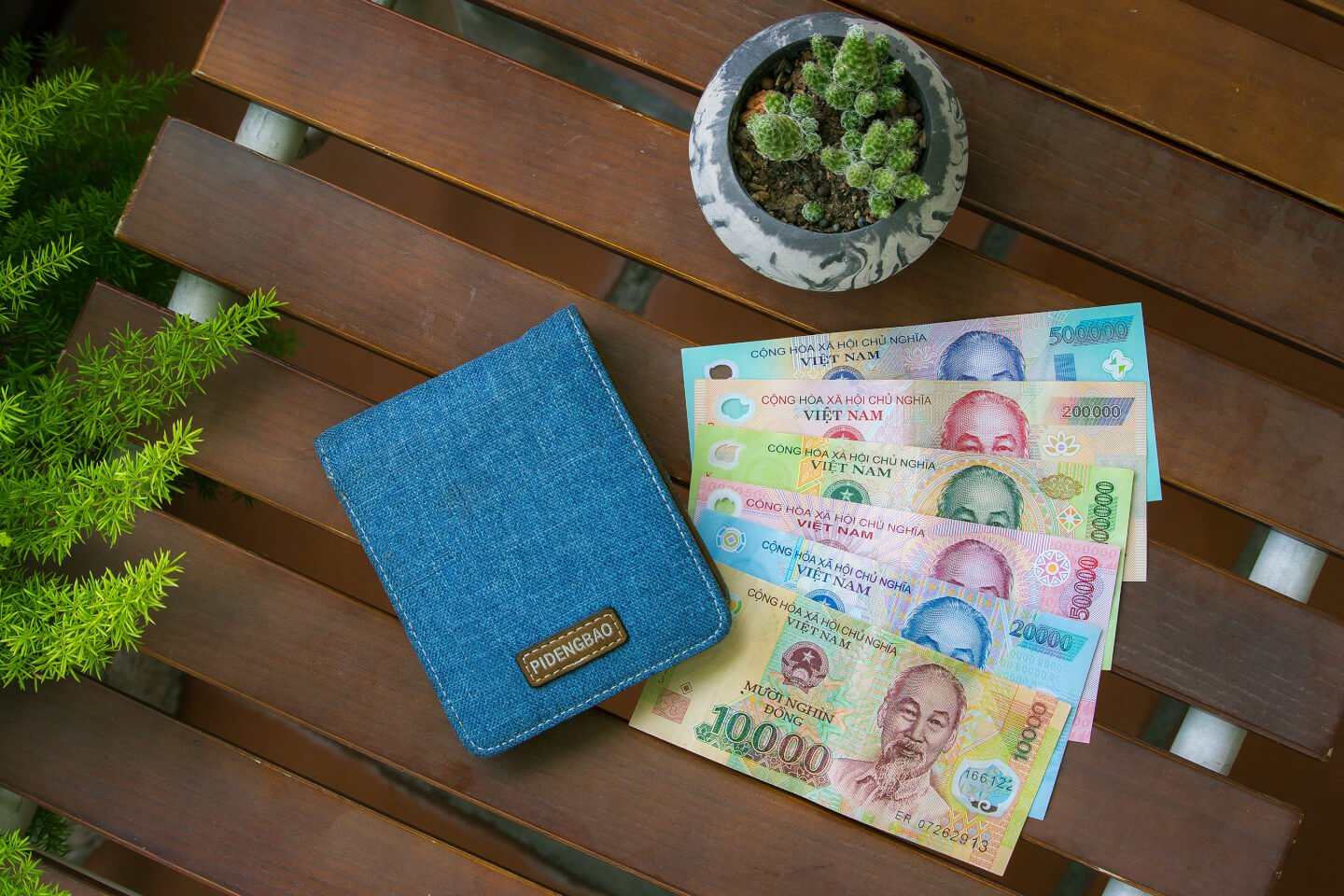 vietnamese polymer money