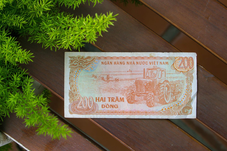 vietnamese dong (13)