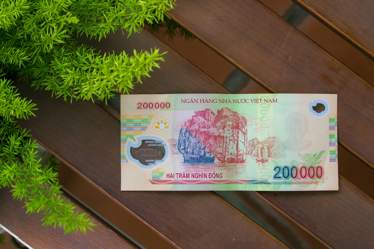 The 500,000 VND is the biggest note in Vietnam, adding up to just over 20USD.  You can live comfortably on a budget of 500,000VND per day!
