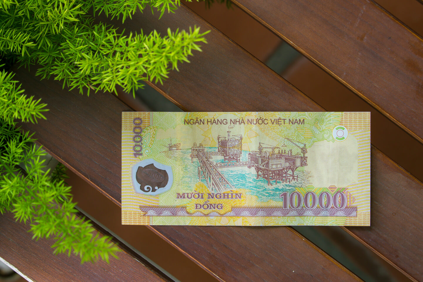 The 20,000 VND (20,000d) is blue and has a picture of the Japanese Covered  Bridge of Hoi An on one side. This will help you distinguish it from the  500,000 ...