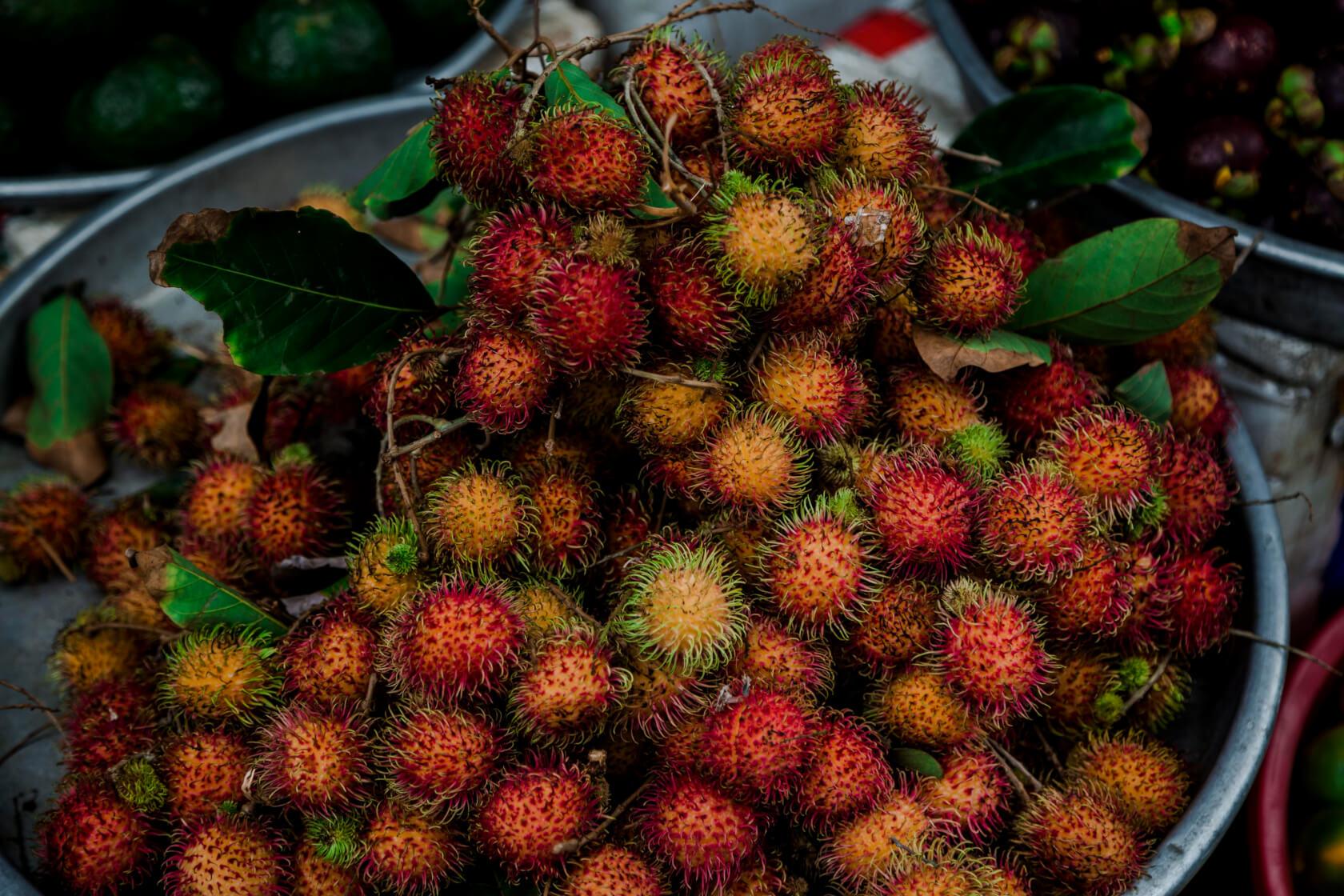 exotic vietnamese fruitrambutan