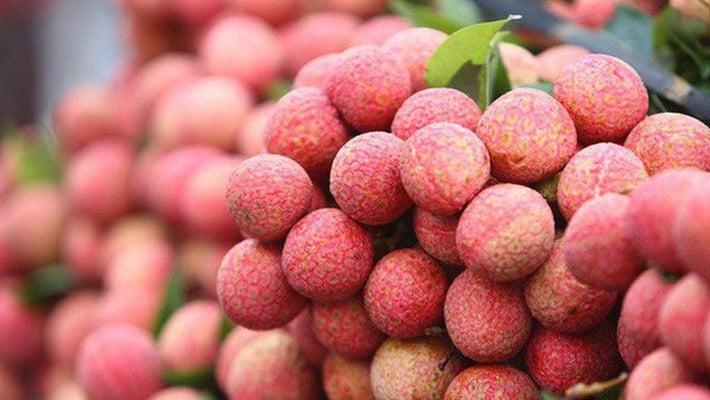 lychee vietnamese fruit