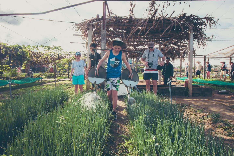 farming tra que herb garden