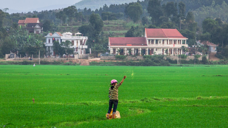 Phong Nha farmstay