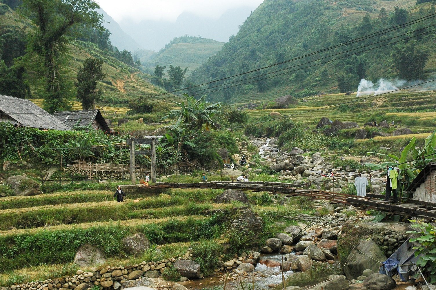 comprehensive guide to sapa