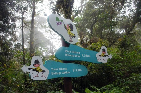 outdoor activities dalat trekking canyoning