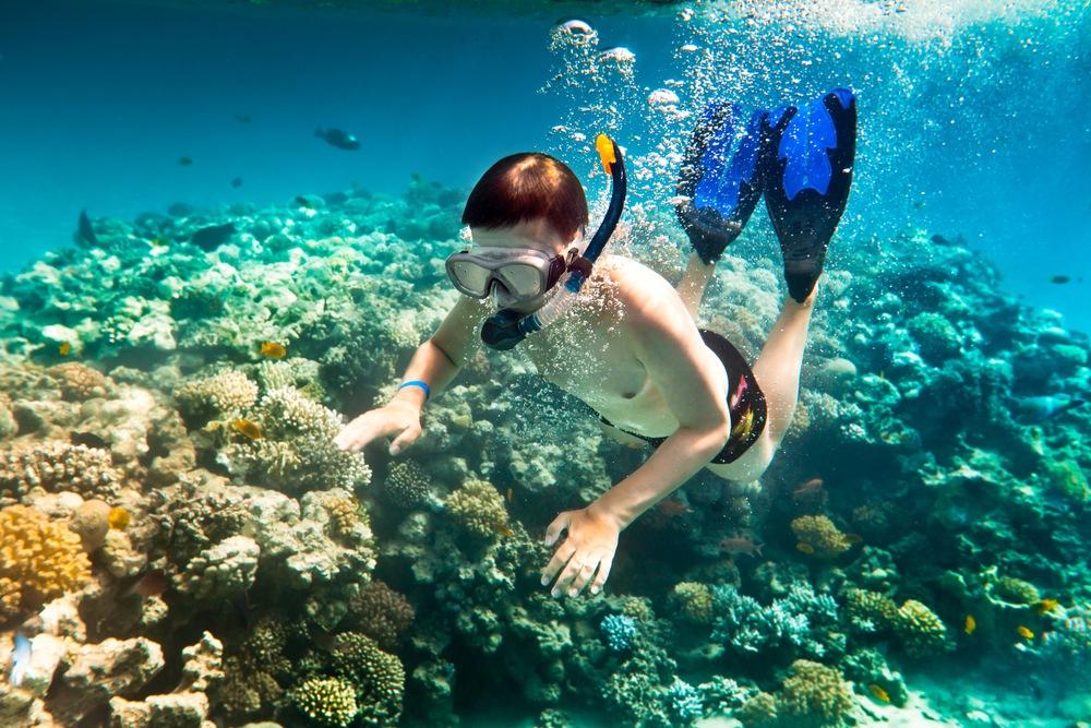 snorkeling-cham-island