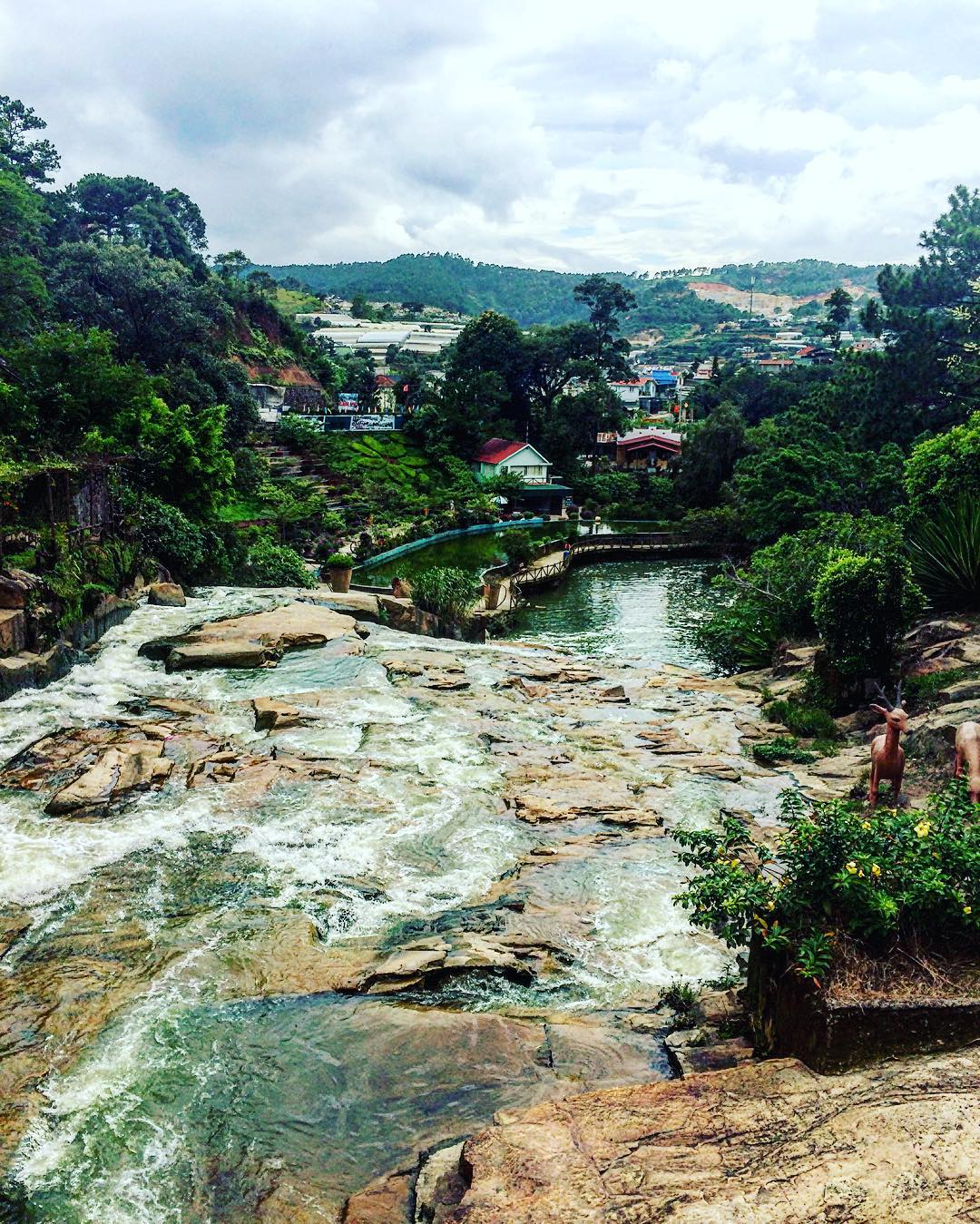 how many days in dalat