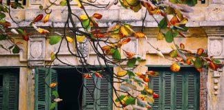 autumn-hanoi